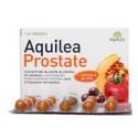 Prostate Aquilée.