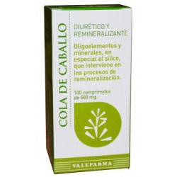 Horsetail 100 Comprimidos. Valefarma.