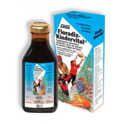 Floradix-Kindervital Syrup