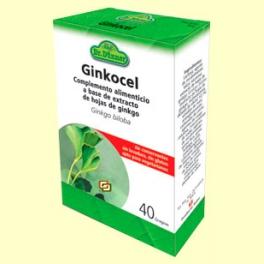 ginkgo cu vene varicoase